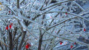 La pluie glacée au Québec